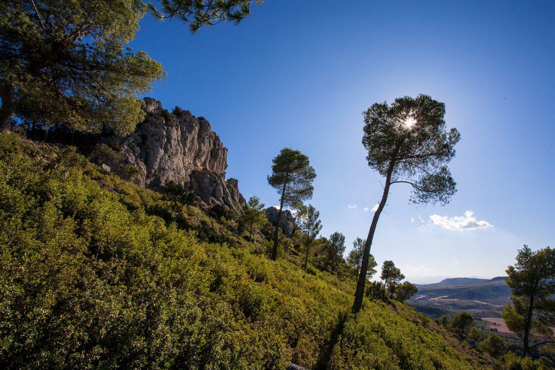 Hospedería Bajo el Cejo. Sierra Espuña